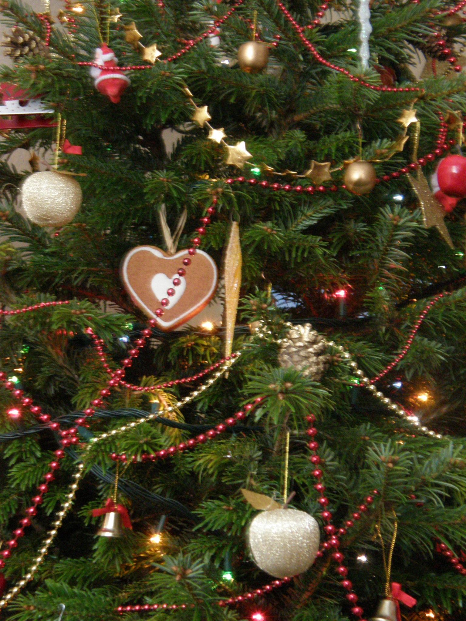 2014-12-24 do 2014-12-26: przewodnik bożonarodzeniowy dla Saskiej Kępy