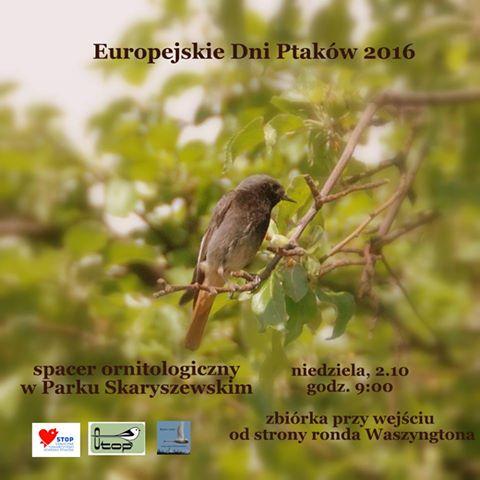2016-10-02: Europejskie Dni Ptaków – wycieczka do parku Skaryszewskiego ze STOP