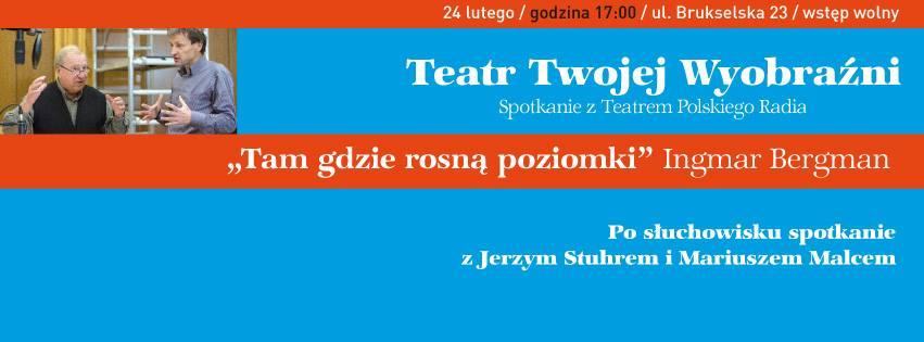 """2017-02-24:  ODWOŁANE: Teatr Twojej Wyobraźni """"Tam gdzie rosną poziomki"""" Ingmar Bergman"""