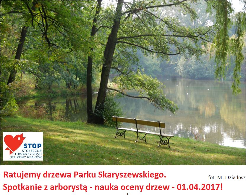 2017-04-01: spacer z arborystą/dendrologiem po Skaryszaku