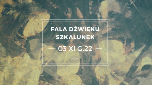 2017-11-03: Szkalunek vs Fala dźwięku