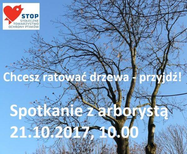 2017-10-21: Jak ratować drzewa? Spotkanie z arborystą w terenie